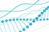 DNA二重螺旋構造イラスト